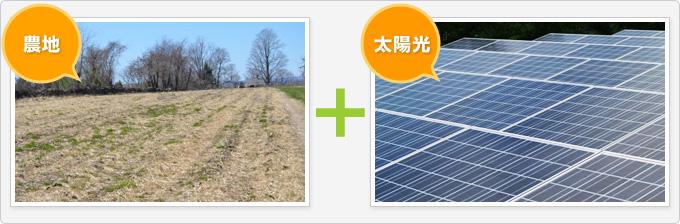農地+太陽光